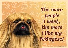 Pekingese Dog Sign Wall Plaque Magnet Velcro 5x7 - More People I Meet