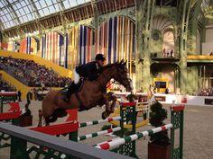 Saut Hermès 2014 - Grand Palais
