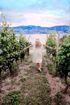 With more than 180 wineries in the Okanagan Valley it can be hard to choose where to go! Here's a list of the 10 best Okanagan Wineries.