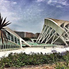 👍🏾 #summer #valencia #erasmus #spain #espana #ciudaddelascienciasylasartes #modern #architecture