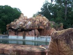 Disney's River Country Water Park - now abandoned.