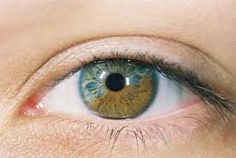 From xovain: There are three types of heterochromia: Complete (each eye a different colour). Sectoral (a segment of contrasting colour in the iris). Central (a different colour radiating out from the pupil).