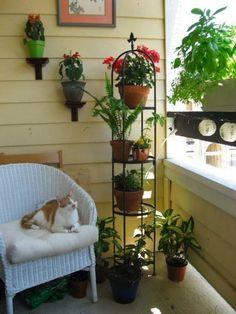 Kein Garten, aber ein Balkon? Keine Bange! Diese 9 Ideen, um Ihren Balkon mit Blumen zu schmücken, sind großartig! - DIY Bastelideen