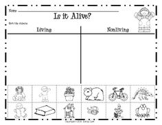 math worksheet : 1000 images about science ideas on pinterest  living and  : Living And Nonliving Things Worksheet For Kindergarten