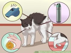 Image titled Train a Cat to Stop Doing Almost Anything Step 5  placing cloth or cotton balls soaked in citronella, perfume, air freshener, citrus, aloe, eucalyptus oil, and oil of wintergreen on objects or surfaces.