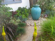 This is Part 2 of the Mar Vista Green Garden Tour in Southern California.  Need some more inspiration for a low-water garden? The Mar Vista Green Garden tour I attended last week yielde...