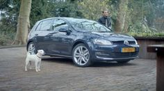 Dogs & Volkswagen. Another lovely TVC by Tribal DDB Amsterdam