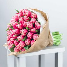 Pink Tulips, Flowers, Accessories