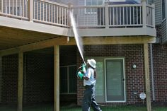 Let us help you with your stinging insect problem!  Call A1 Bee Specialists in Bloomfield Hills, MI today at (248) 467-4849 to schedule an appointment if you've got a stinging insect problem around your house or place of business! You can also visit www.a1beespecialists.com!