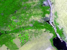 Localizado no norte do Egito, este wallpaper do espaço mostra o delta onde o rio Nilo se divide e desagua no Mar Mediterrâneo. Importantes culturas cultivadas na rica área agrícola incluem arroz, algodão e cana-de-açúcar.