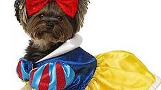 Most Magical Disney-Themed Halloween Costumes for Dogs