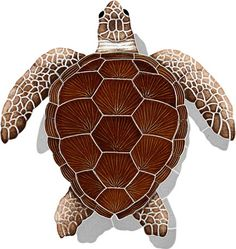 Quick Overview: Add character, color and life to your backyard oasis, commercial or residential project with this stunning hand made mosaic. Experience its realism and capture more than your attention Small Turtles, Baby Turtles, Swimming Pool Mosaics, Swimming Pools, Loggerhead Turtle, Ceramic Turtle, Turtle Quilt, Turtle Love, Sea Creatures