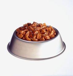 Holistic Dog Food Recipes