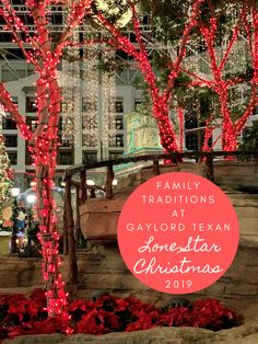 2020 Biggest Christmas Tree In Dallas Fort Worth 40+ Best Dallas/Fort Worth Texas images in 2020 | dallas fort