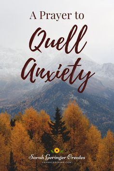 Do you know that prayer can help you quell anxiety? I use prayer to overcome anxiety, and I drafted this prayer based on my book, Transforming Your Thought Life. Since the most popular chapter of my book seems to be on Anxious Thoughts, I will center this prayer on quelling anxiety. May it bring you God's perfect peace today. #prayer #howtopray #anxiety #anxietyrelief