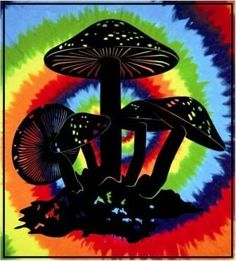 "Wonder Walls Tie Dye Mushroom Tapestry - $27.99  This large tie dye tapestry will look great in any room. It has a mushroom design on a tie dye background and it measures approximately 90"" x 100"". Hang on a wall or use as a bedspread. It can cover almost an entire wall."