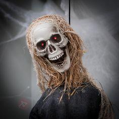 Schauriges Gelächter dringt erfüllt dein Haus zu #Halloween, und wer mutig genug ist, den Geräuschen zu folgen, dem wird von diesem sich dank Batterien bewegenden #Sensenmann ein gehöriger Schrecken eingejagt!