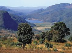Lake Fundudzi - the sacred lake of the Venda in Limpopo Region of South Africa. My Land, Land Scape, South Africa, Travel Destinations, Tourism, Country Roads, Mountains, Water, Outdoor
