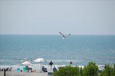 Condo vacation rental in Folly Beach, SC, USA from VRBO.com! #vacation #rental #travel #vrbo