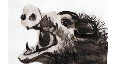 Marlene Dumas illustreerde Venus en Adonis.