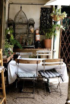 rustic dining scene