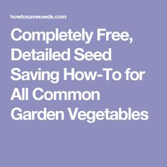 Completely Free, Detailed Seed Saving How-To for All Common Garden Vegetables