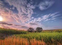 Степь. Завораживающая природа Белокалитвинского района Ростовской области!