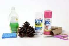 How to Paint Pine Cones for Any Season or Occasion | eHow | eHow