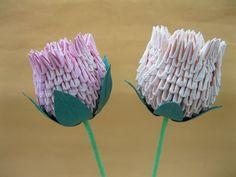 3D Origami - Roses