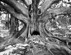 love the ideas/surrealism of this piece by Thomas Barbey