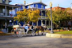 Autumn horse and carriage ride. Fall, foliage, Cape May Point, Ocean City, Jersey Cape, Cape May County, New Jersey