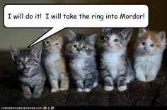 lord of the rings humor   funny-pictures-i-will-do-it-i-will-take-the-ring-into-mordor