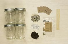 Mason Herb Garden Kit