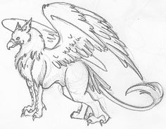 how to draw a griffin | last but not least a full picture of a gryphon