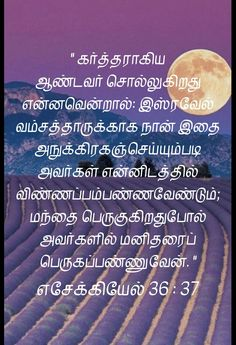 Tamil Bible Study, Tamil Bible Words, Word Of The Day, Word Of God, Bible Quotes, Bible Verses, Tamil Christian, Bible Verse Wallpaper, Jesus Loves You
