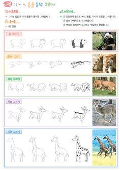 즐거운미술생각 - 동물동작그리기 Cute Animal Drawings, Art Drawings, Projects For Kids, Art Projects, Diy And Crafts, Arts And Crafts, Kids Part, Jr Art, Working With Children