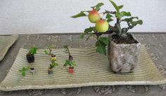 Mimi crabapple bonsai and mame bonsai grouping.