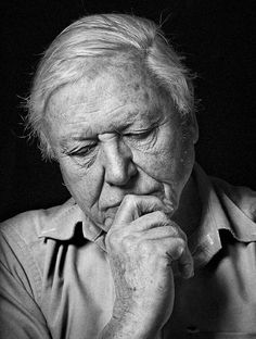 I love this portrait of Sir David Attenborough by Sam Faulkner, which … - Pinom. Famous Portraits, David Attenborough, Energy Resources, People Of Interest, Beautiful Mind, Famous Faces, Print Pictures, Portrait Photography, Idol