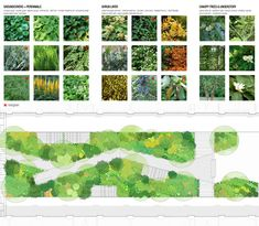 Landscape Concept, Landscape Plans, Urban Landscape, Landscape Design, Desert Landscape, Architecture Design Concept, Landscape Architecture Portfolio, Architecture Collage, Architecture Board