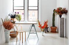 Studio Visit / Meta Flora Simple Flowers, Different Flowers, Exotic Flowers, Large Flowers, Diy Lego, Ceramic Store, Interiors Magazine, Design Floral, Photographic Studio