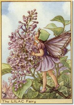 Cicely Mary Barker - Fairies of the Trees - The Lilac Fairy Archival Fine Art Paper Print