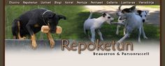 Kennel Repoketun - Beauceron & Parson