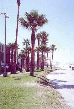 venice beach, ca: la county, via Flickr.