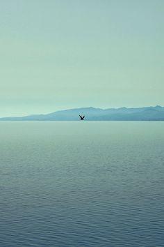 FREEIOS7 | sea-of-alone | freeios7.com