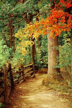 Autumn country path it says come take and walk and calm your soul