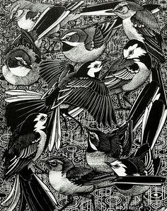 Colin See-Paynton : Walk of Wagtails at Davidson Galleries Illustrations, Illustration Art, Davidson Galleries, Tinta China, Bird Drawings, Wood Engraving, Linocut Prints, Bird Prints, Woodblock Print