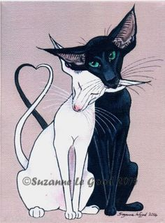 LTD-EDITION-ORIENTAL-CAT-IN-LOVE-PAINTING-PRINT-FROM-ORIGINAL-BY-SUZANNE-LE-GOOD