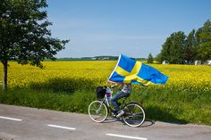 On the road between Dalby and Lund on the Swedish National Day 6 juni Let your Svenska flaggan fly! Native Country, Swedish House, Gothenburg, Swedish Design, Flags Of The World, Spain And Portugal, My Heritage, Stockholm, Scandinavian