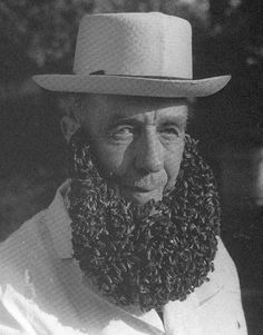 bee beard. I want to put this on a pillow
