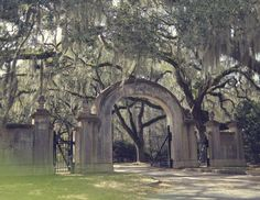 Cemetery in Savannah, if only I could go on a trip down south. Oh The Places You'll Go, Great Places, Places To Travel, Beautiful Places, Places To Visit, Simply Beautiful, Savannah Chat, Savannah Georgia, Historic Savannah